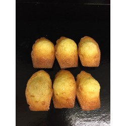 6 madeleines
